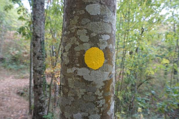 Chemin de Maleval : ne vous perdez plus, suivez les ronds jaunes !